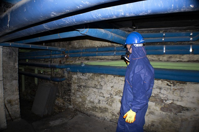 Asbestos operative inspecting asbestos pipes in the basement